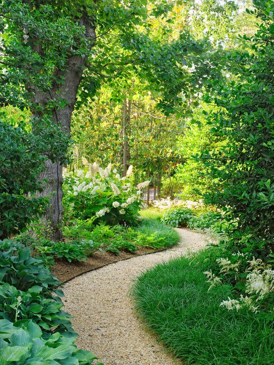 87955aad8876d39ed0a145172cb83ece--backyard-ideas-landscaping-ideas
