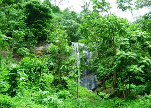 Grenada_(Mt._Carmel_Falls)