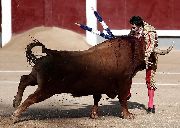 NTD-spanish-matador-gored-to-death-3