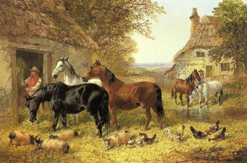 horsesfarmyard_Herringjnr