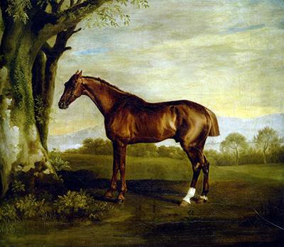 A Chestnut Racehorse George Stubbs