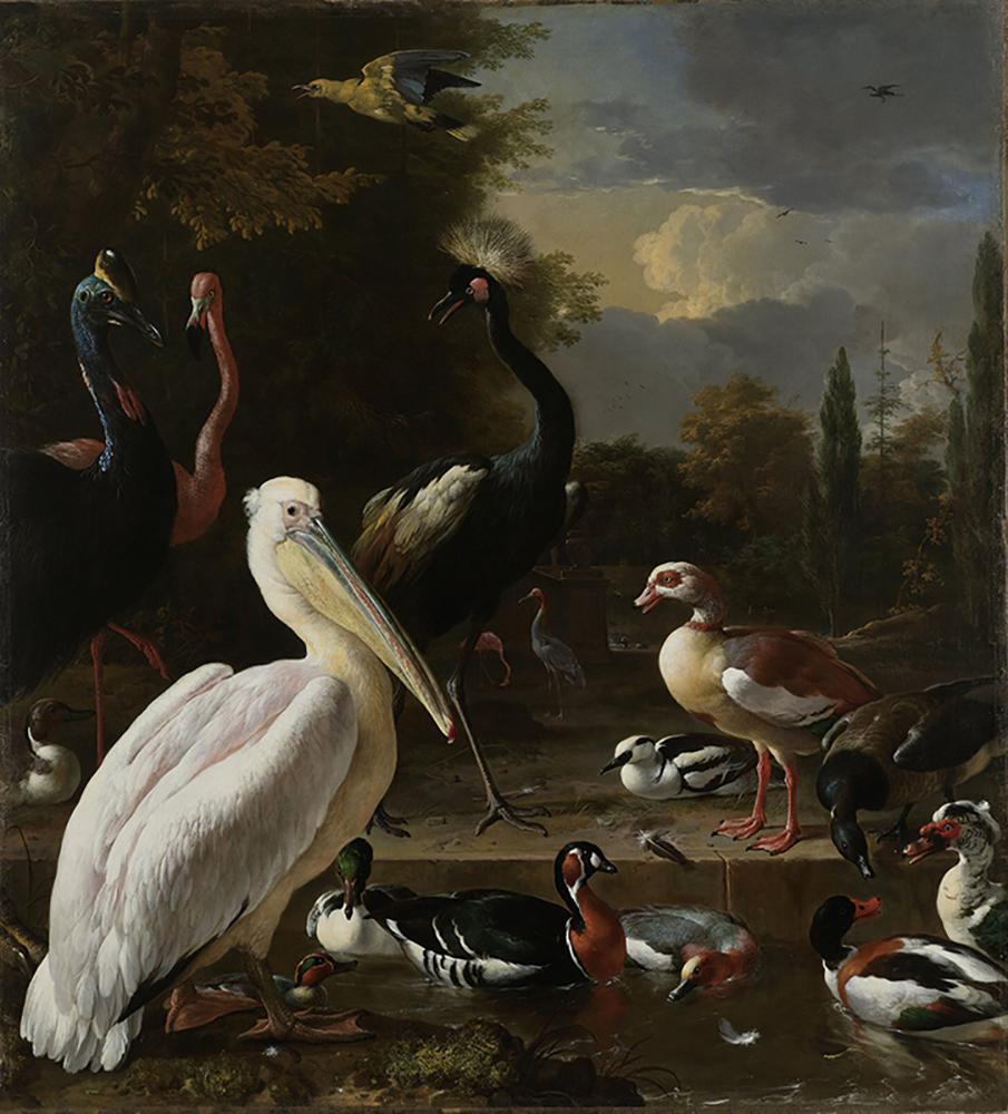 Een-pelikaan-en-ander-gevogelte-bij-een-waterbassin-bekend-als-8216Het-drijvend-veertje8217-R0073