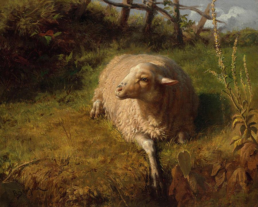 sheep-rosa-bonheur