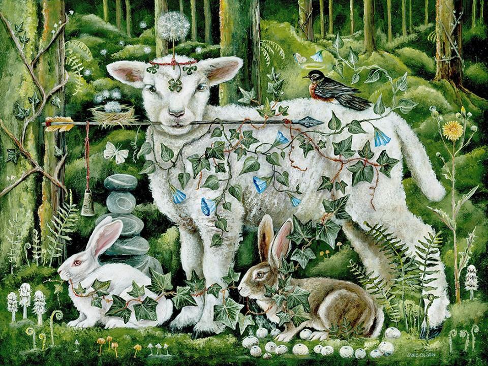 sheepandrabbits