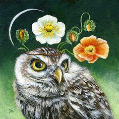 e64a5a003f8cf7f4c585e7d868561946--owl-pictures-owl-art