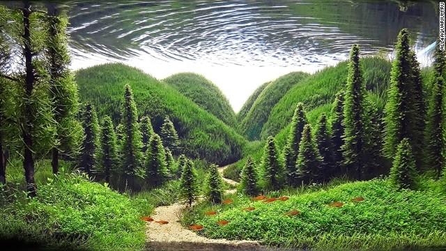 140129115248-aquarium-whisper-of-the-pines-all4aquarium-ru-horizontal-gallery