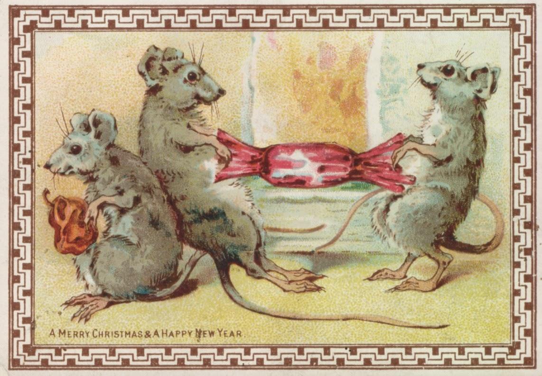 4. Mice Pulling Cracker