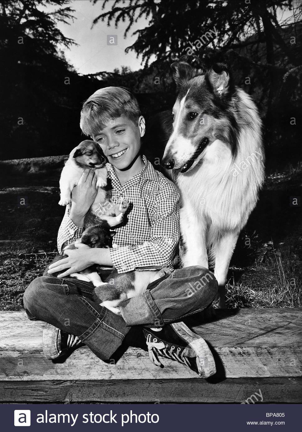jon-provost-dog-lassie-1954-BPA805