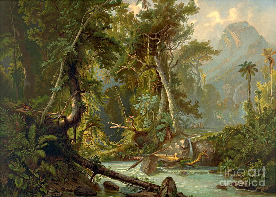 south-american-forest-1873-padre-art (1)