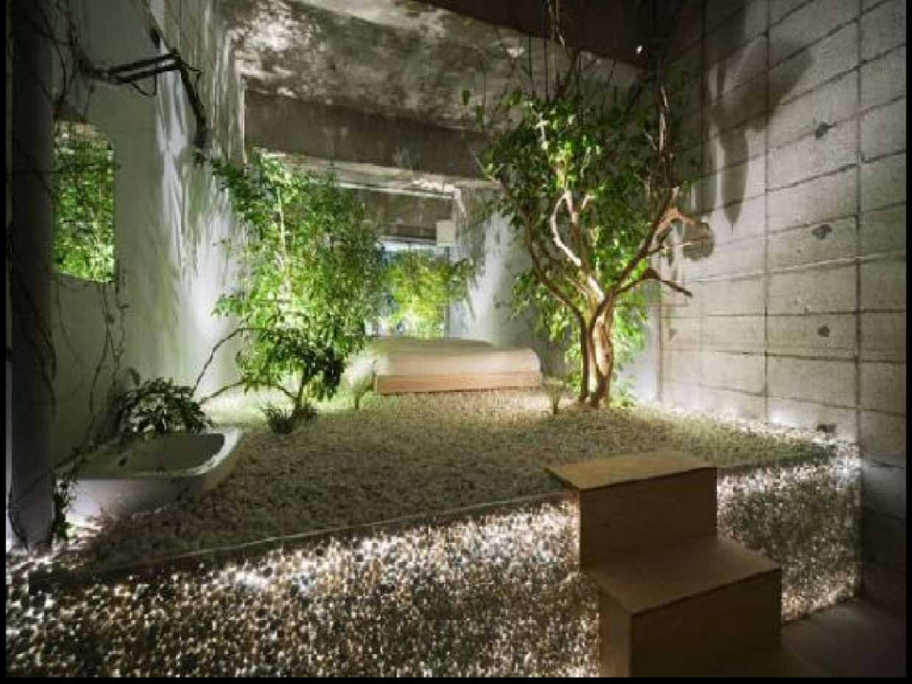 amazing-little-jungle-indoor-garden-design-ideas-desain-taman-kecil