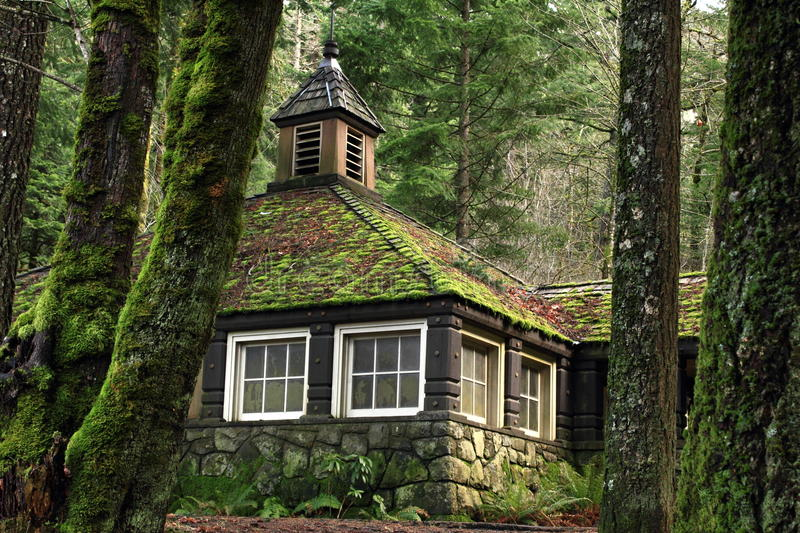 mossy-country-stone-cottage-woods-18828607