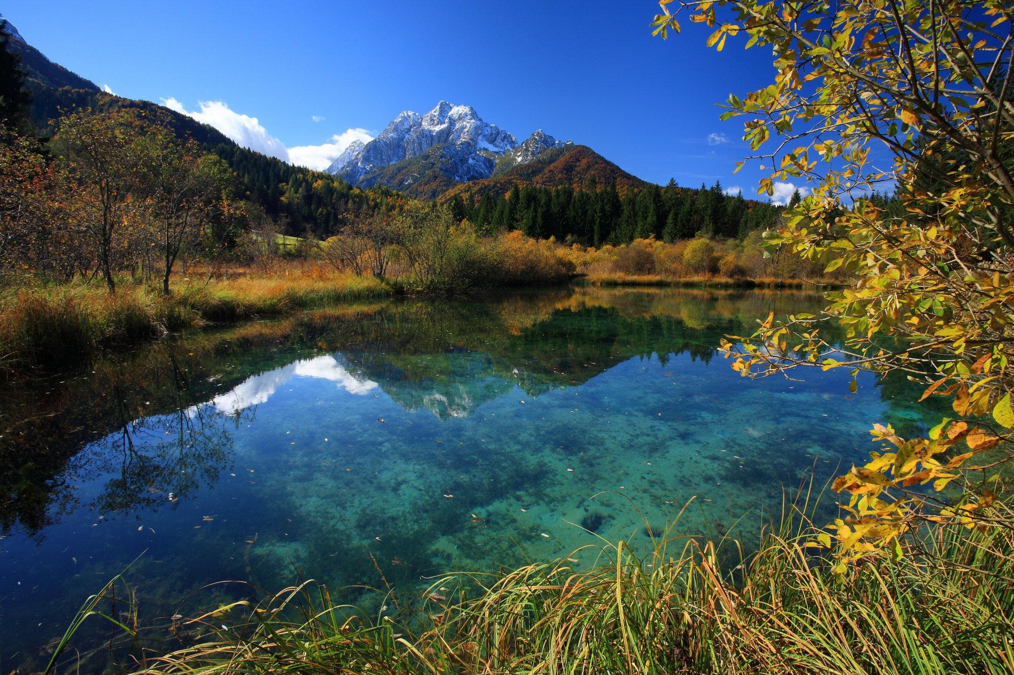zelenci-nature-reserve-autumn