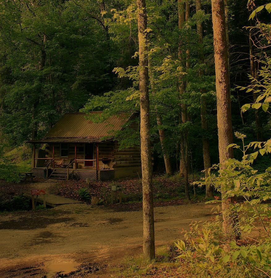forest-cabin-nina-fosdick